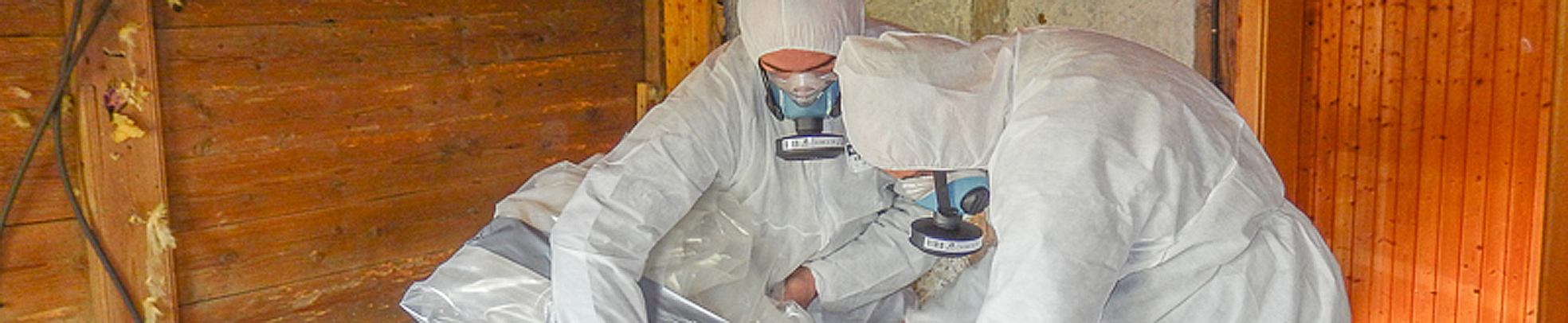 Asbest (2b von 1)