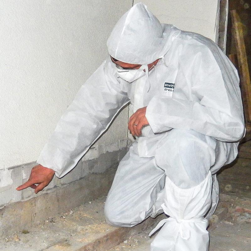 asbestanalyse-20160530 (14 von 25)