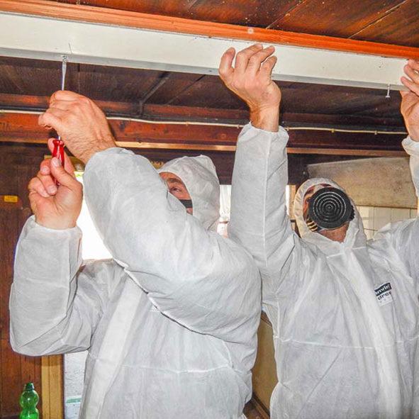 web-Asbest-(1-von-1)