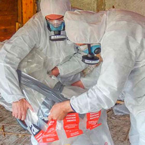web-Asbest-(2b-von-1)